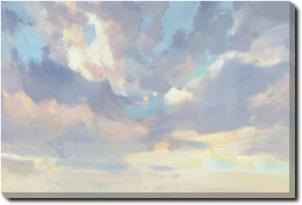 It's A Toss Up - Gallery Wrapped (40x50x2.25 inches)